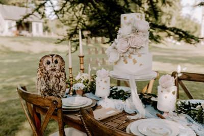 Sugar flowers and gold leaf wedding cake display